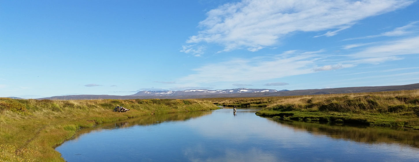 Iceland Fishing Guide – Fly fishing in Iceland – Salmon fishing in ...