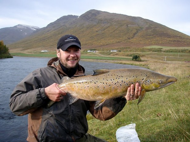 Iceland fishing guide fly fishing in iceland salmon for Fly fishing guide jobs